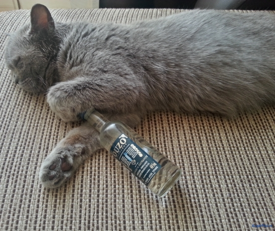 Miss Yuki Drunk On Happiness