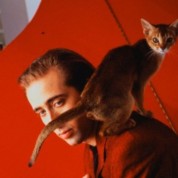 Nicolas Cage and His Cat