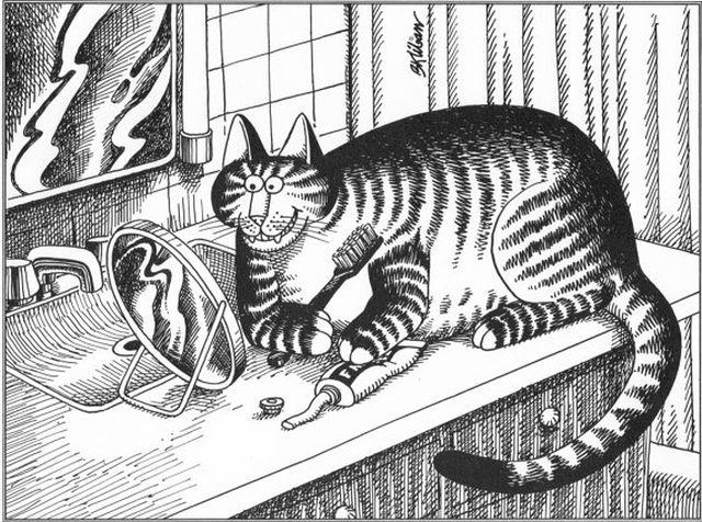 Kliban Cats - super poze cu super pisi 1