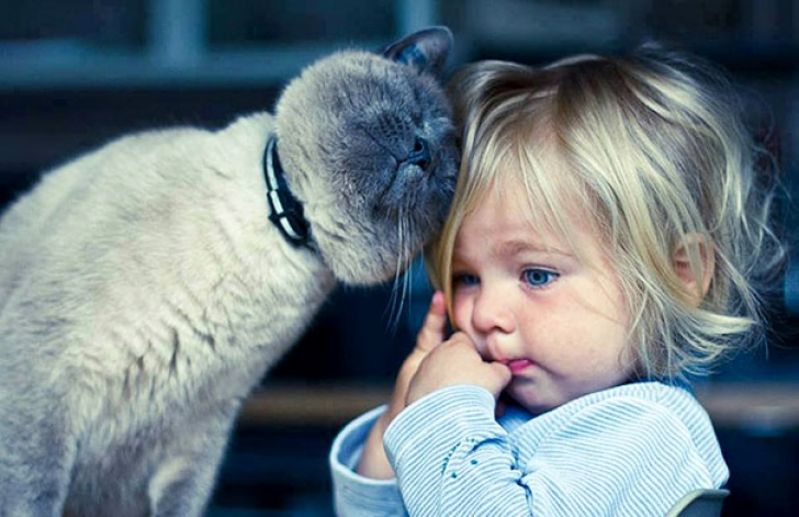 kids-with-cats-13__605_47463100