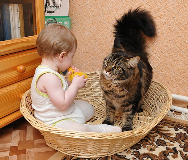 kids-with-cats-511__605