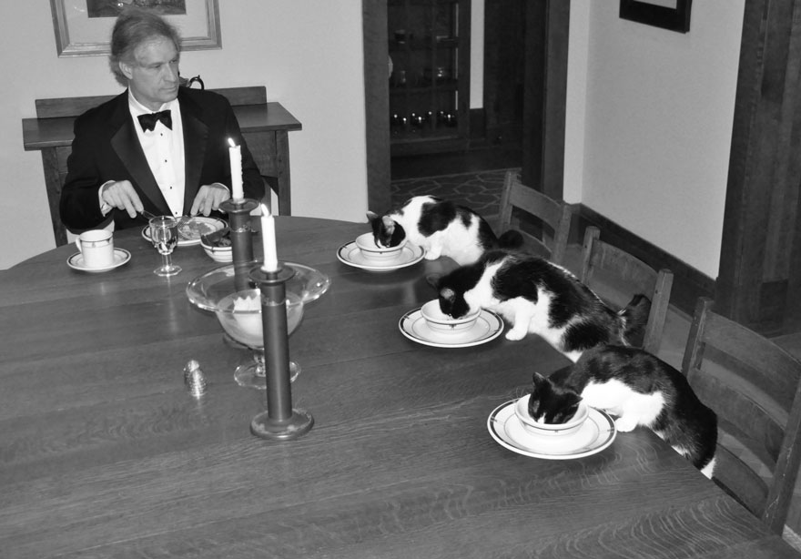 2012 man-fancy-dinner-with-cats-wife-vacation-1